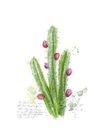Cactus Verse II by Ingrid Blixt