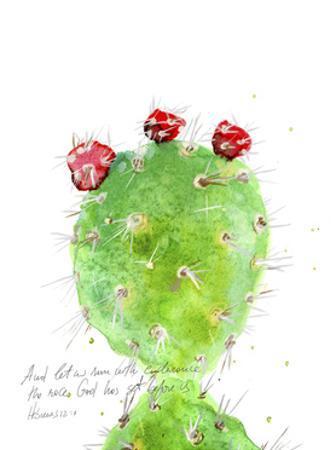 Cactus Verse IV by Ingrid Blixt