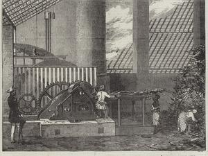 Interior of the Mill-House on the Carauna Estate