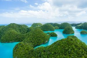 Flying over Lush Tropical Rock Islands, Palau by Ippei Naoi