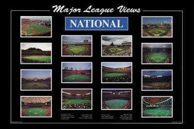 Major League Views by Ira Rosen