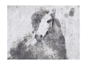 Dapple Horse II by Irena Orlov