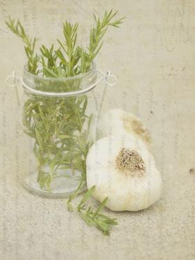 Herb Still Life II by Irena Orlov