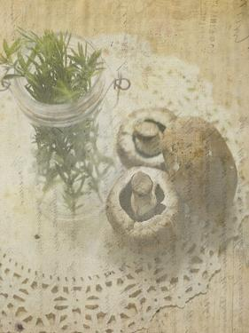 Herb Still Life IV by Irena Orlov