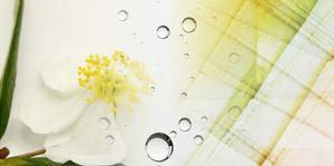 Serene Photo Collage I by Irena Orlov