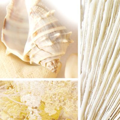 Spa Collage II by Irena Orlov