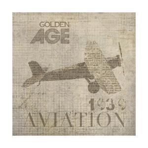 Vintage Aviation IV by Irena Orlov