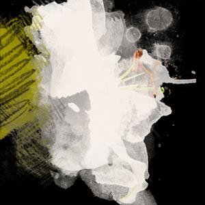 White and Black by Irena Orlov