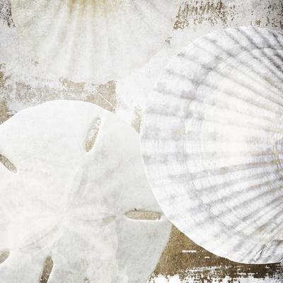 White Shells II