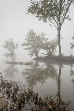 A Foggy Autumn Morning on the Potomac River by Irene Owsley