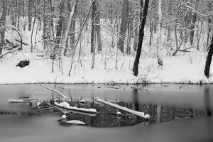 A Scenic Snowy Winter Landscape Along the Chesapeake and Ohio Canal by Irene Owsley