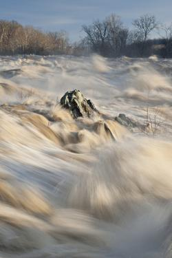 Great Falls on the Potomac River in Flood by Irene Owsley