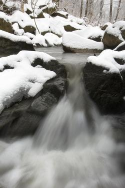 Sligo Creek Rushing Through a Snowy Forest, and Past Snow-Covered Boulders by Irene Owsley