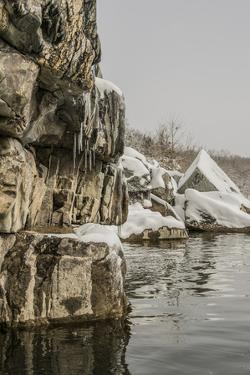 The Potomac River Shoreline Up from Angler'S by Irene Owsley