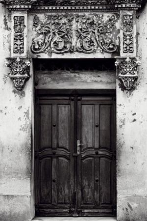 Adornado Puerta by Irene Suchocki