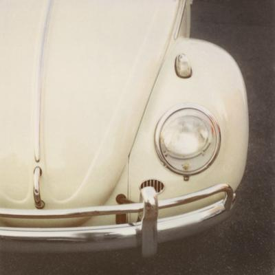 Bug - Detail by Irene Suchocki