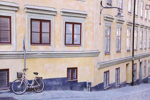 Distinctive Dwelling by Irene Suchocki