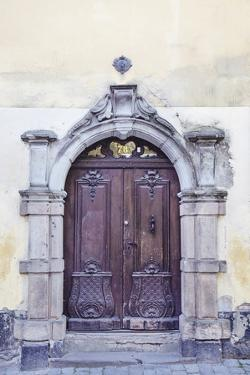 Enchanting Entrance by Irene Suchocki