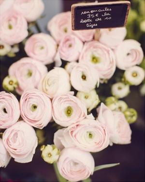 Flower Market by Irene Suchocki
