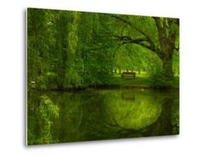 Green World by Irene Suchocki