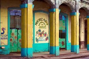 Mercado by Irene Suchocki