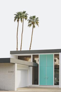 Palm Heights - Haven by Irene Suchocki