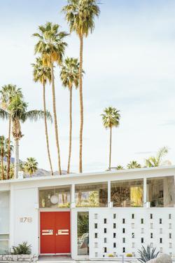 Palm Heights - Home by Irene Suchocki