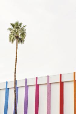 Palm Rhythm by Irene Suchocki