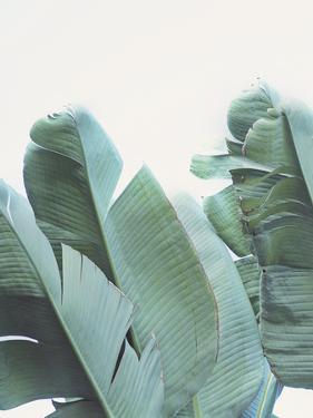 Palmetto Bay - Detail I by Irene Suchocki