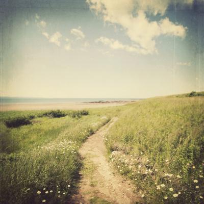 Peaceful Trail by Irene Suchocki