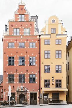 Resplendent Residence by Irene Suchocki