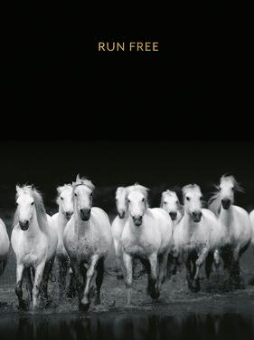 Run Free - Luxe by Irene Suchocki