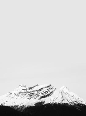 The Peak To Conquer by Irene Suchocki