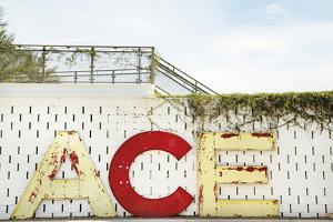 Urban Ace by Irene Suchocki