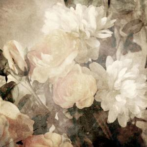 Art Floral Vintage Light Sepia Blurred Background with White Asters and Roses by Irina QQQ