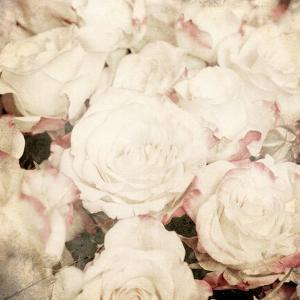 Art Floral Vintage Sepia Background with White Roses by Irina QQQ