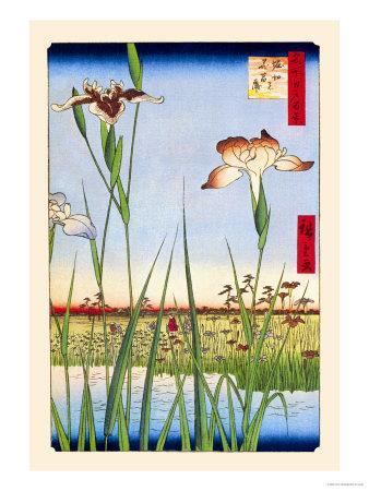 https://imgc.allpostersimages.com/img/posters/iris-garden-at-horikiri_u-L-P2DI4R0.jpg?artPerspective=n