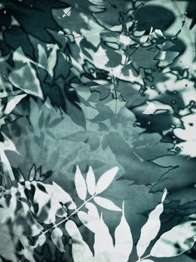 Abstract Leaves by Iris Lehnhardt