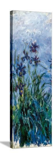 Iris Mauve (detail)-Claude Monet-Stretched Canvas