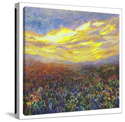 Cacti Sunrise by Iris Scott
