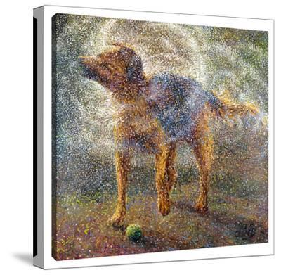 Shakin' Shepherd by Iris Scott