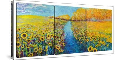 Sunflowers (Triptych) by Iris Scott