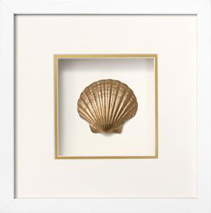 Irish Deep Shell Shadowbox - Gold