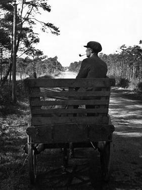 Irish Man on a Cart