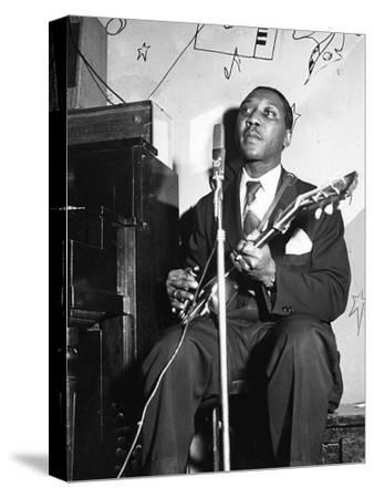 Muddy Waters by Isaac Sutton