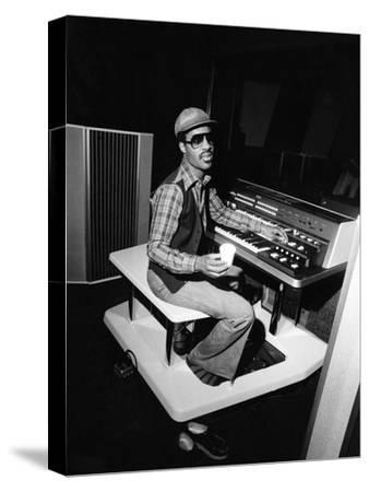 Stevie Wonder - 1976 by Isaac Sutton