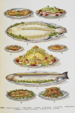 Assorted Fish Dishes Including Salmon, Trout, Cod and Scallops by Isabella Beeton