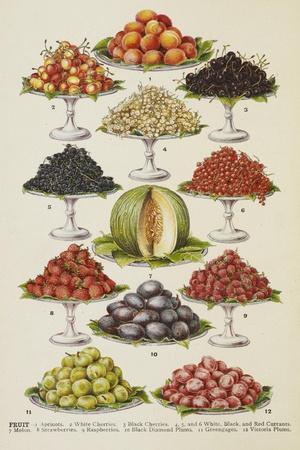 Assorted Fruits Including Melon