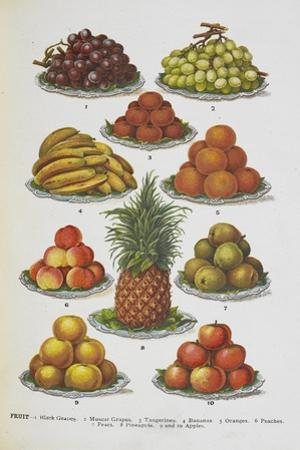 Assorted Fruits Including Pineapple by Isabella Beeton