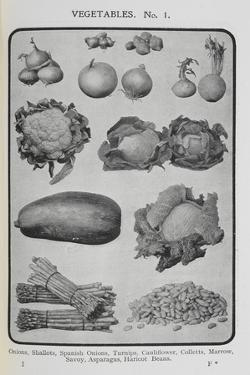Assorted Vegetables by Isabella Beeton
